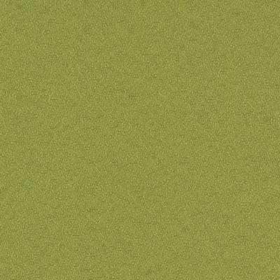 05 スプリンググリーン