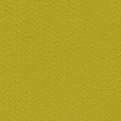 バタフライフェルト / Acid Green 1530