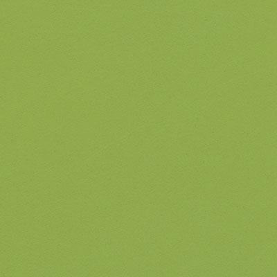 ベルディングレザー / Green BL1910