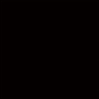 ビニール / Black V101