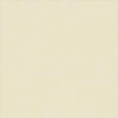 ビニール / White V102
